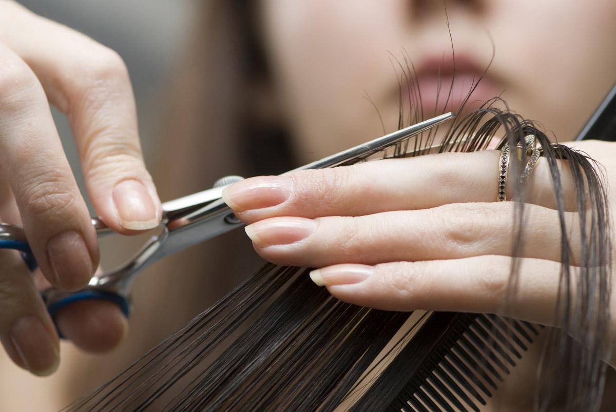 Бизнес-план парикмахерской эконом-класса - Технология бизнеса