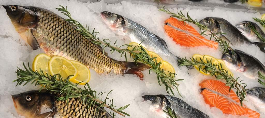 Изображение - Как открыть рыбный магазин с нуля 68eee03cf5d865b5208a568fd34d0580